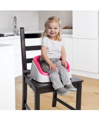 Bright Starts Ingenity Toddler Booster
