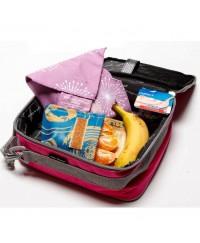 Fridge-to-Go Lunch Fridge Bag