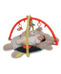 Little Bird Told Me Baby Bear Multi-Activity Playgym
