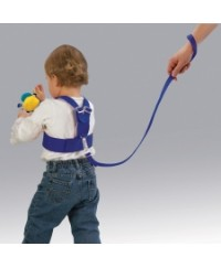 Diono Sure Steps Security Harness